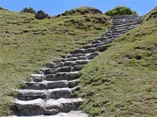 8 Steps on the Path Toward Organizational Design